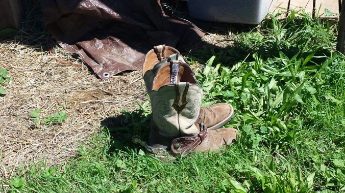 Left behind boots