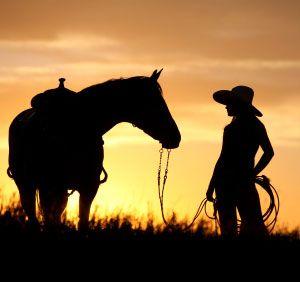 7f38848564ec0b4a6e22307f6e743238--sunset-silhouette-horse-silhouette